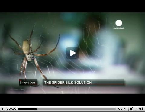 Ένας πραγματικός ...spiderman και το μετάξι της αράχνης