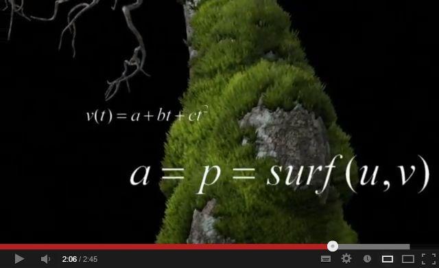 Βιολόγοι, μαθηματικοί και φυσικοί σχεδιάζουν ...βρύα στο
